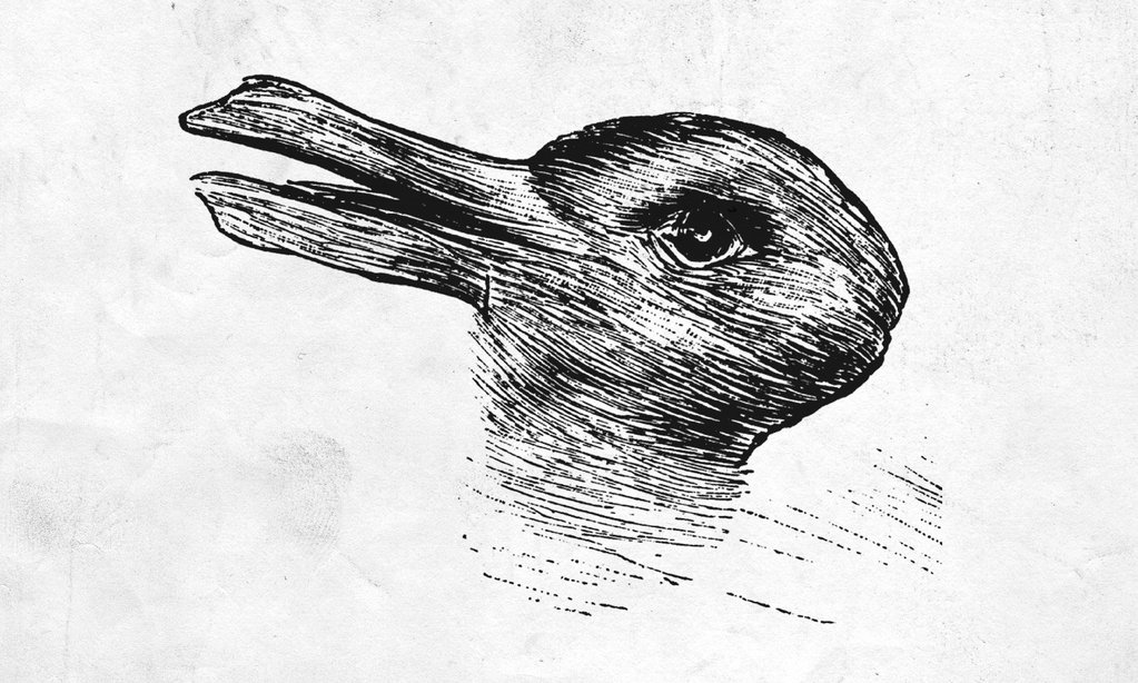 duck-rabbit_1024x1024